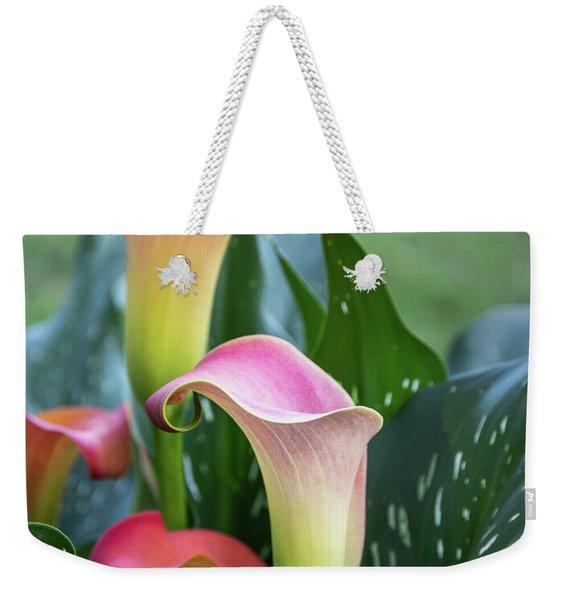 Colorful Spring Flowers Weekender Tote Bag
