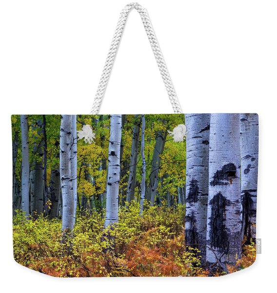 Weekender Tote Bag featuring the photograph Colors Of October by John De Bord