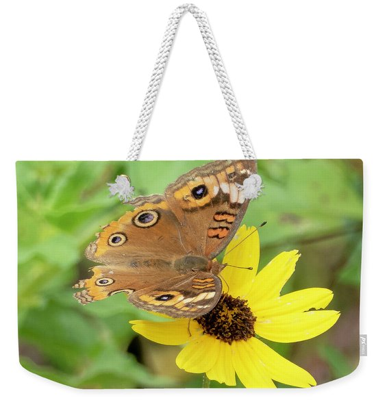 Weekender Tote Bag featuring the photograph Common Buckeye Butterfly by Sally Sperry