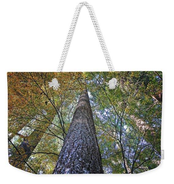 Cones In The Canopy Weekender Tote Bag