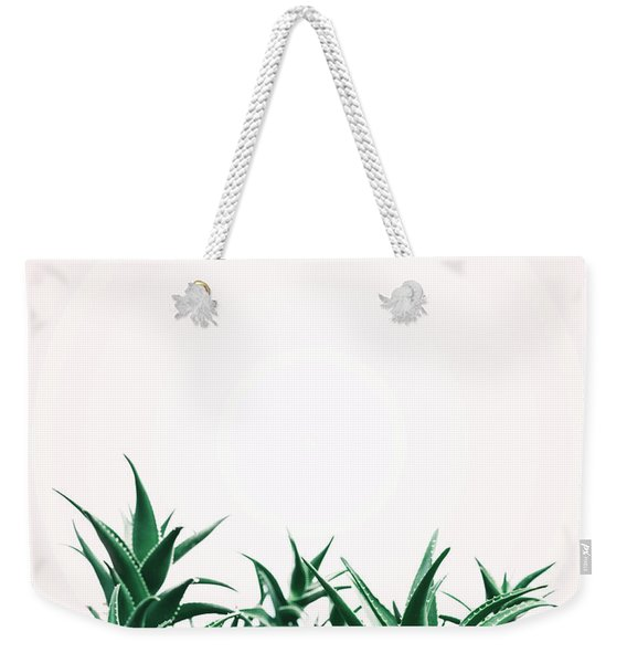 Cool Minimal Nature Design With Aloe Vera Plant In Pastel And Gr Weekender Tote Bag