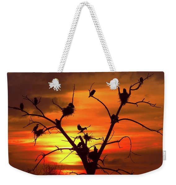 Cormorant Nest Building Time Weekender Tote Bag