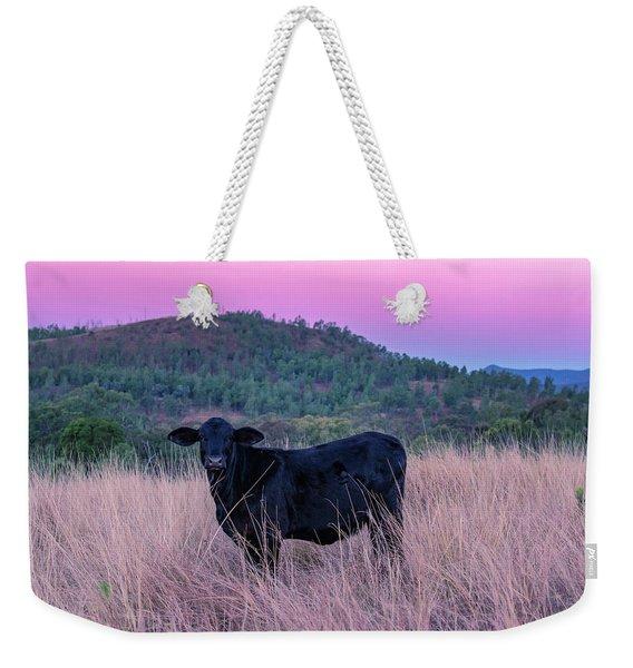 Cow Outside In The Paddock Weekender Tote Bag