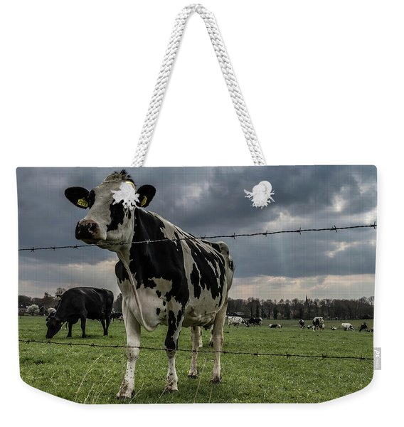 Weekender Tote Bag featuring the photograph Cows Landscape. by Anjo Ten Kate