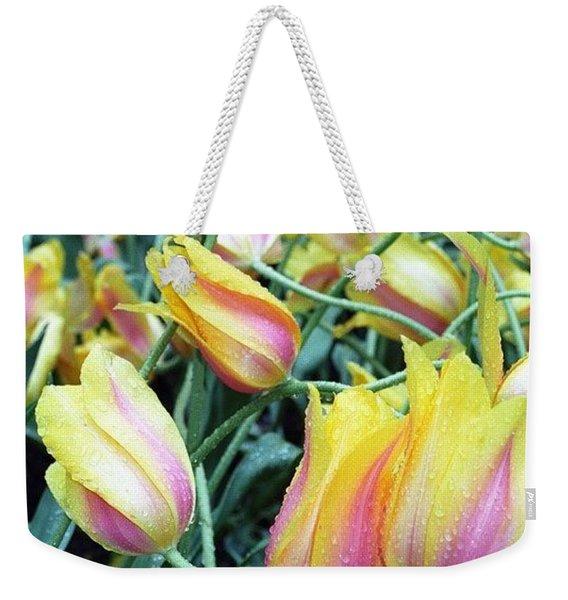 Crazy Tulips Weekender Tote Bag