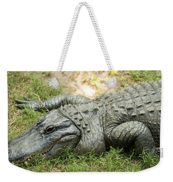 Weekender Tote Bag featuring the photograph Crocodile Outside by Rob D Imagery