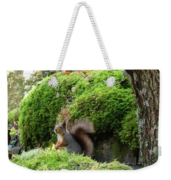 Curious Squirrel Weekender Tote Bag