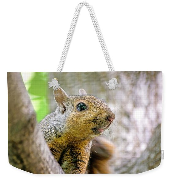 Cute Funny Head Squirrel Weekender Tote Bag