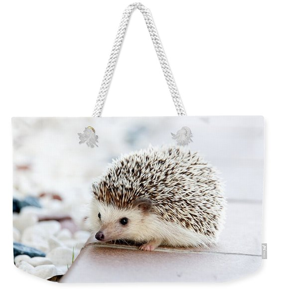 Cute Hedgeog Weekender Tote Bag