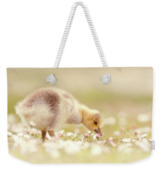 Cute Overload Series - Grazing Gosling Weekender Tote Bag
