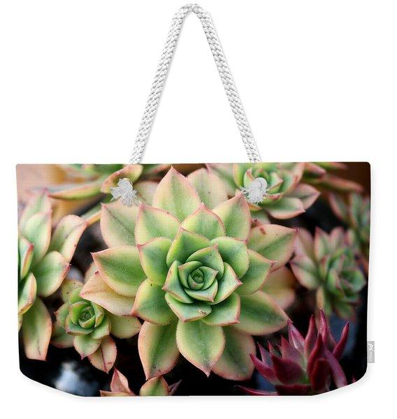 Cute Succulent Weekender Tote Bag