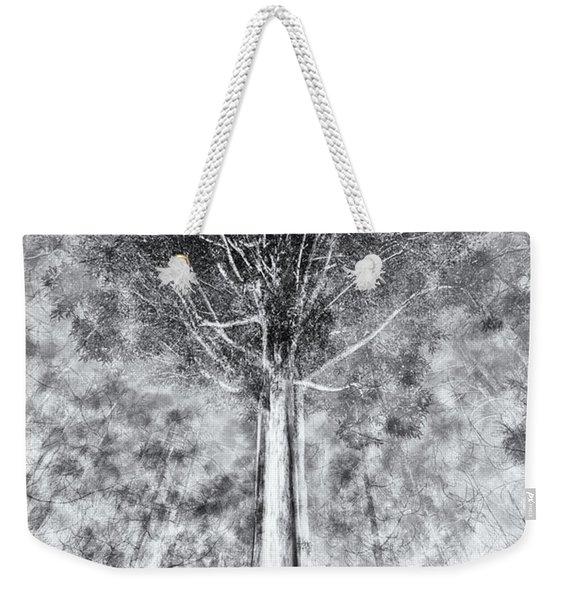 D1654p Weekender Tote Bag