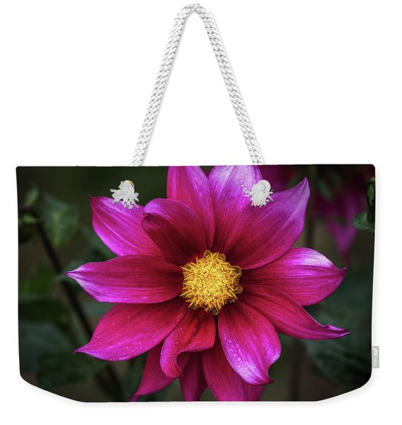 Weekender Tote Bag featuring the photograph Dahlia by Robin Zygelman