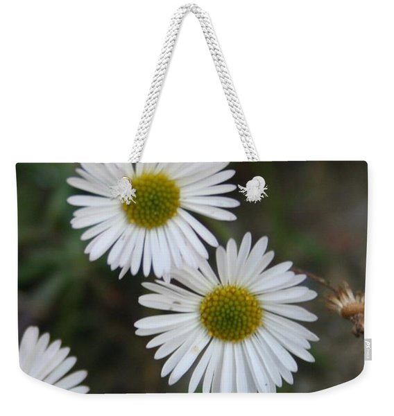 Daisy Daisy And Your White Petal Minding The Sun Core Weekender Tote Bag