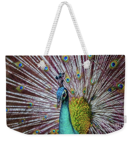 Dancing Indian Peacock  Weekender Tote Bag