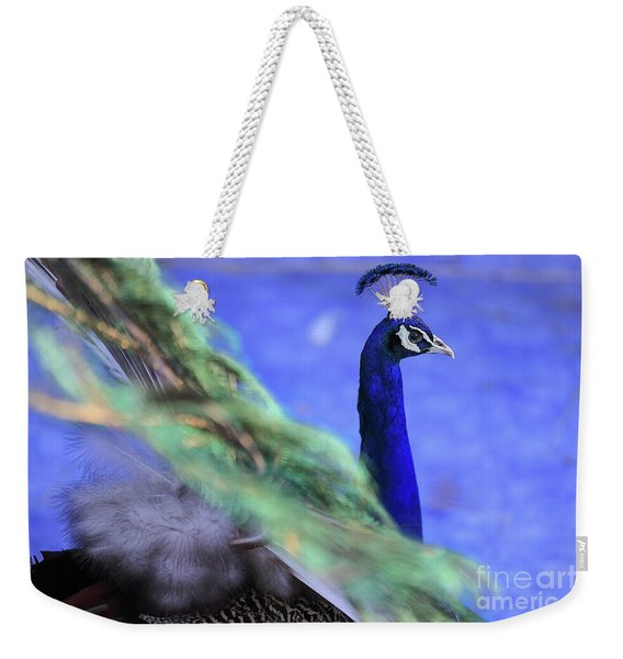 Dancing Peacock Weekender Tote Bag