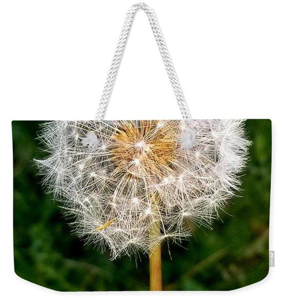 Dandelion 1 Weekender Tote Bag