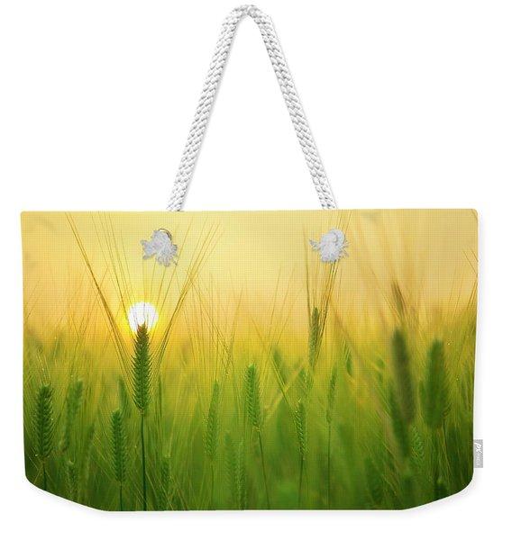 Dawn At The Wheat Field Weekender Tote Bag