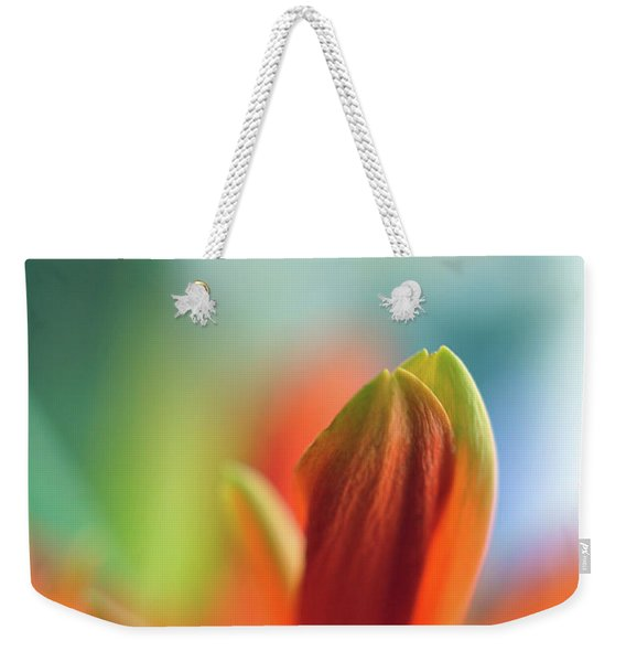 Weekender Tote Bag featuring the photograph Decision by Michelle Wermuth