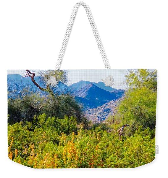 Deep Desert Valley In A Sonoran Desert Spring Weekender Tote Bag