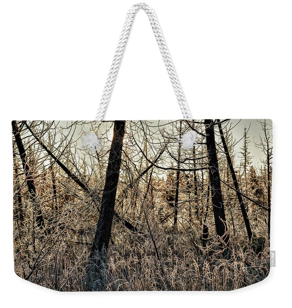 Weekender Tote Bag featuring the photograph Deep Frost by Doug Gibbons