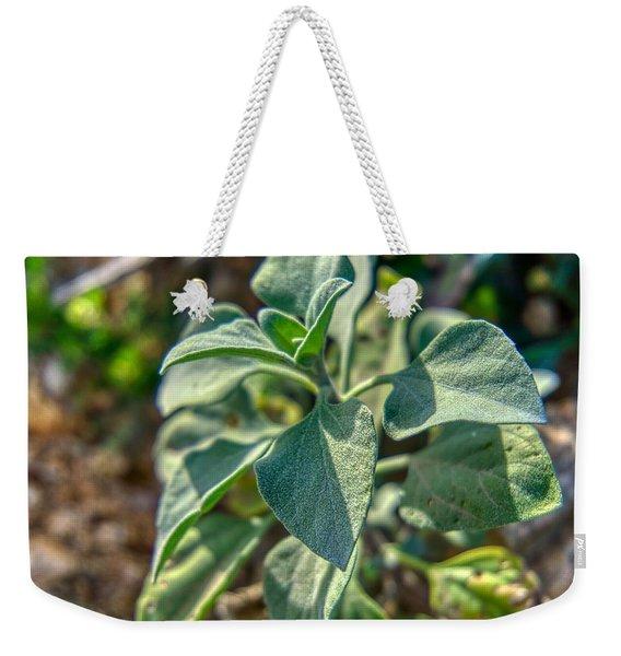 Desert Plant Life Weekender Tote Bag