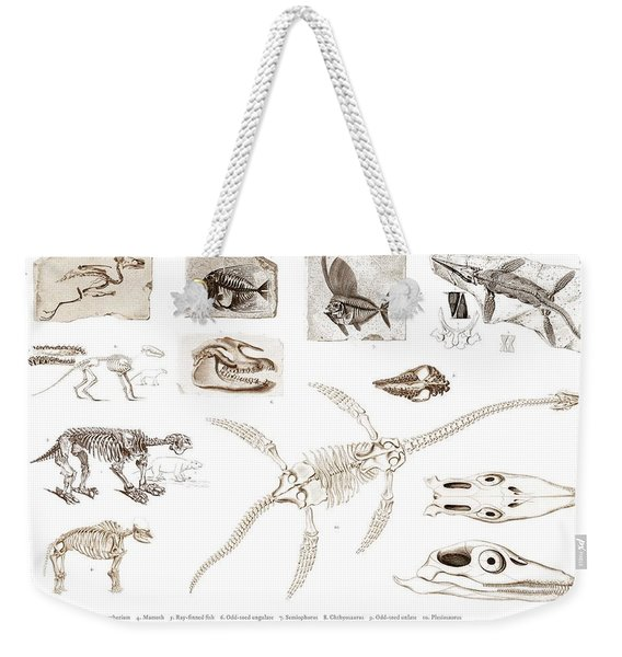 Different Types Of Ancient Fossils Illustrated By Charles Dessalines D' Orbigny  1806-1876 3 Weekender Tote Bag