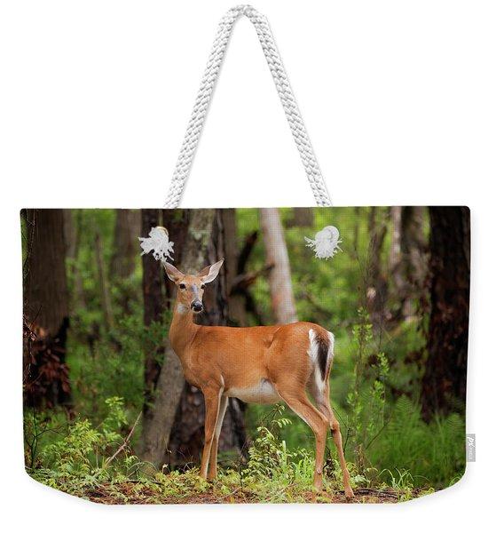 Doe, A Deer, A Female Deer Weekender Tote Bag