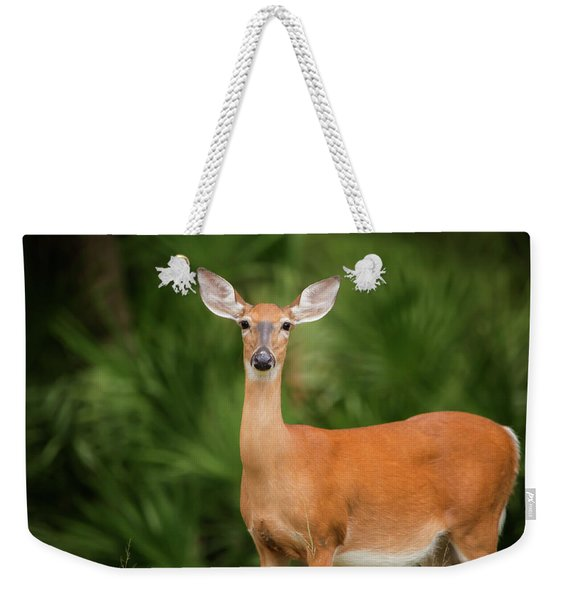 Doe Weekender Tote Bag