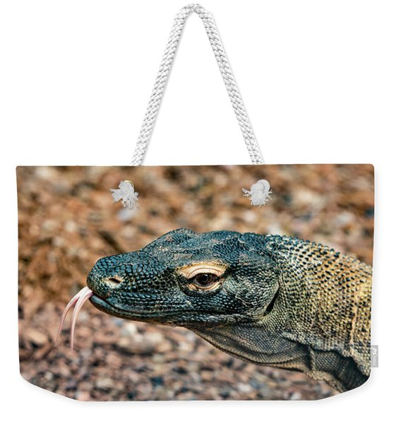 Weekender Tote Bag featuring the photograph Dragon With No Fire by Dheeraj Mutha