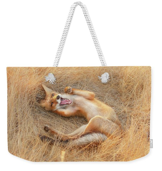 Draw Me Like One Of Your French Girls - Funny Fox Weekender Tote Bag