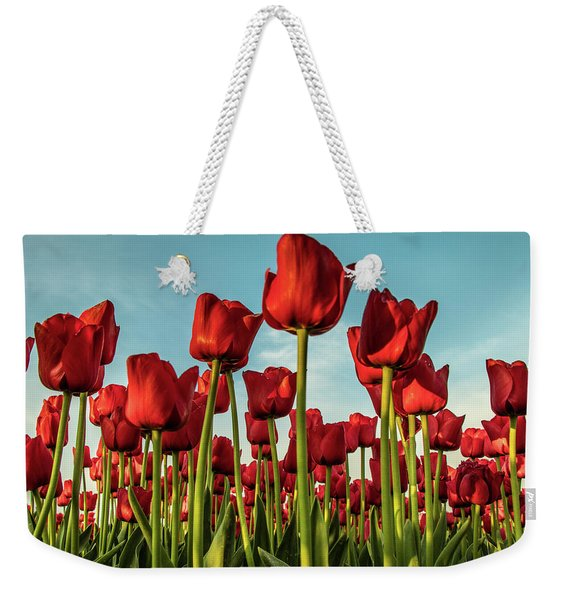 Weekender Tote Bag featuring the photograph Dutch Red Tulip Field. by Anjo Ten Kate