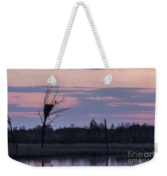 Eagle Sunset Weekender Tote Bag
