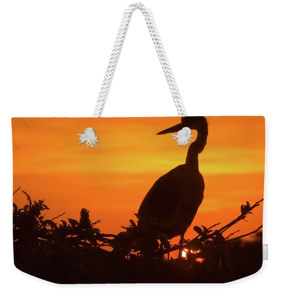 Weekender Tote Bag featuring the photograph Early Bird by Robin Zygelman