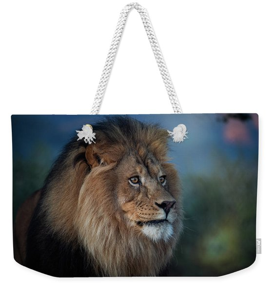 Early Morning Lion Portrait Weekender Tote Bag