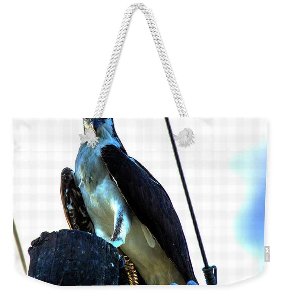 Electrifying Pose  Weekender Tote Bag