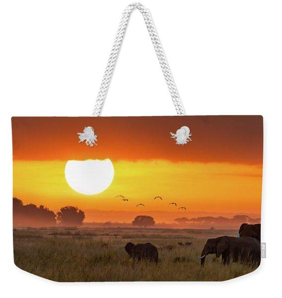 Elephants At Sunrise In Amboseli, Horizonal Banner Weekender Tote Bag