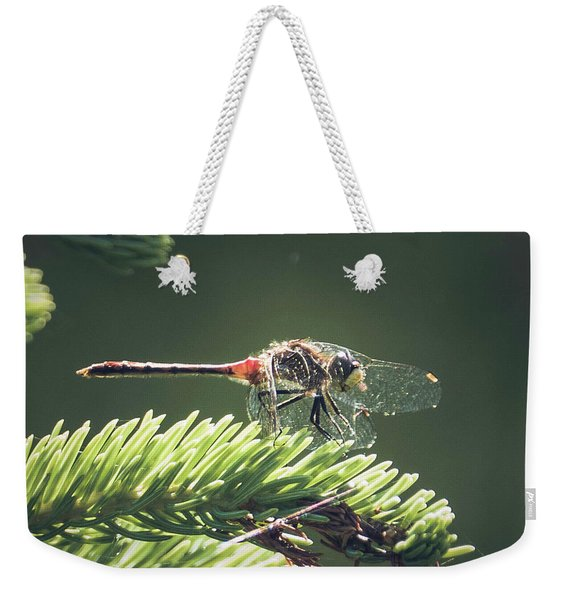 Weekender Tote Bag featuring the photograph Elfin Whiteface Skimmer by Sally Sperry