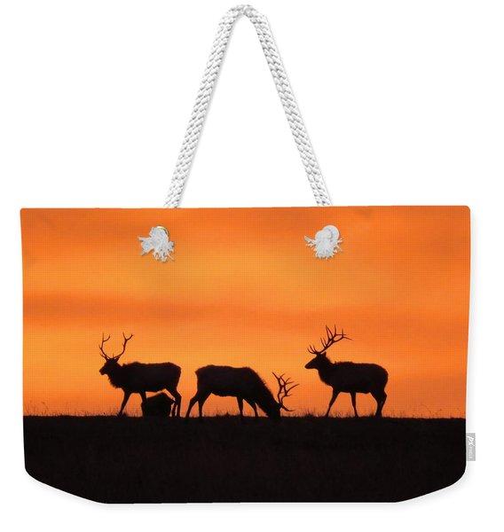 Elk In The Morning Light Weekender Tote Bag