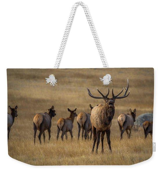Elk Rut In Full Swing Weekender Tote Bag