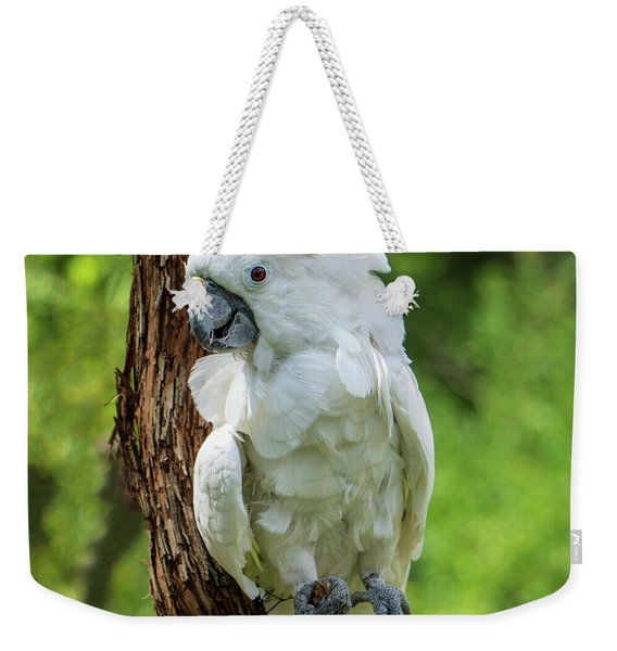 Endangered White Cockatoo Weekender Tote Bag