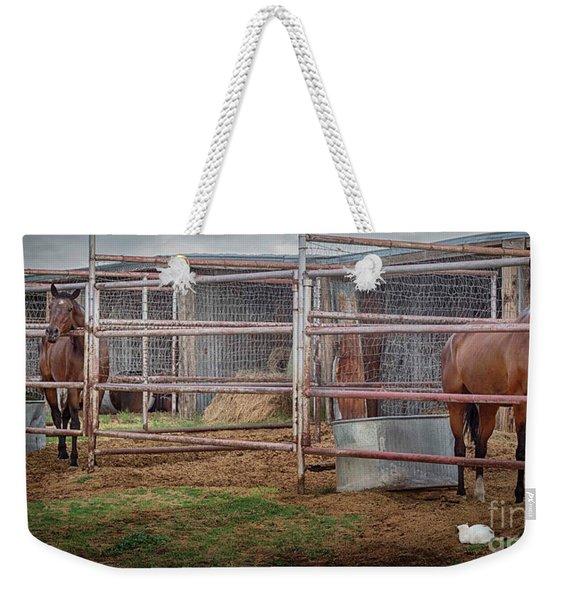 Equine Feline Weekender Tote Bag