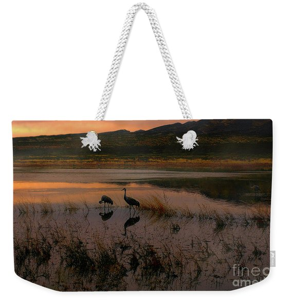 Evening Duet Weekender Tote Bag