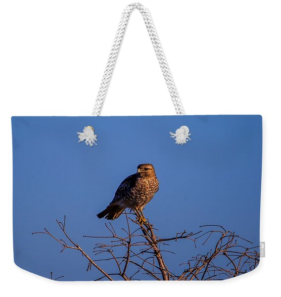 Evening Look Out Weekender Tote Bag