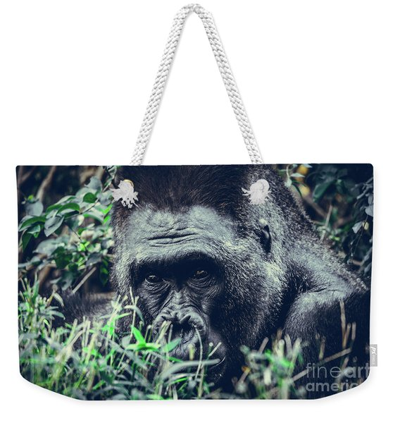 Weekender Tote Bag featuring the photograph Eyes Speak by Dheeraj Mutha