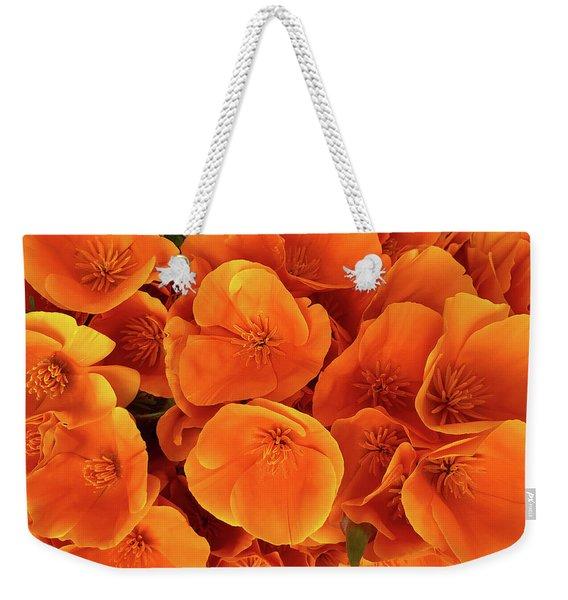 F22019 Weekender Tote Bag