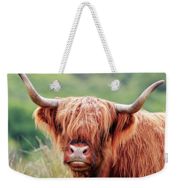 Face-to-face With A Highland Cow Weekender Tote Bag
