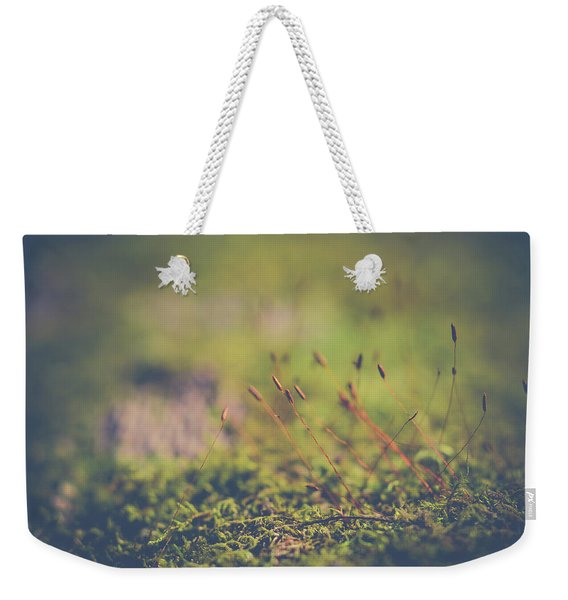 Weekender Tote Bag featuring the photograph Fairy Hunt by Michelle Wermuth
