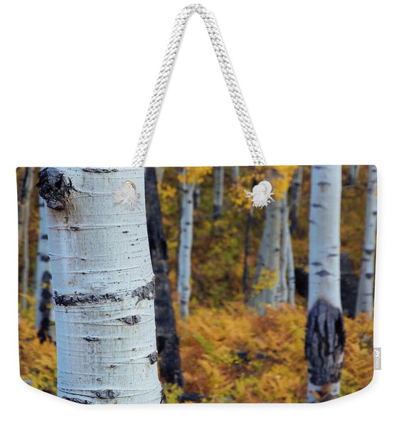 Fall Aspen Forest Weekender Tote Bag