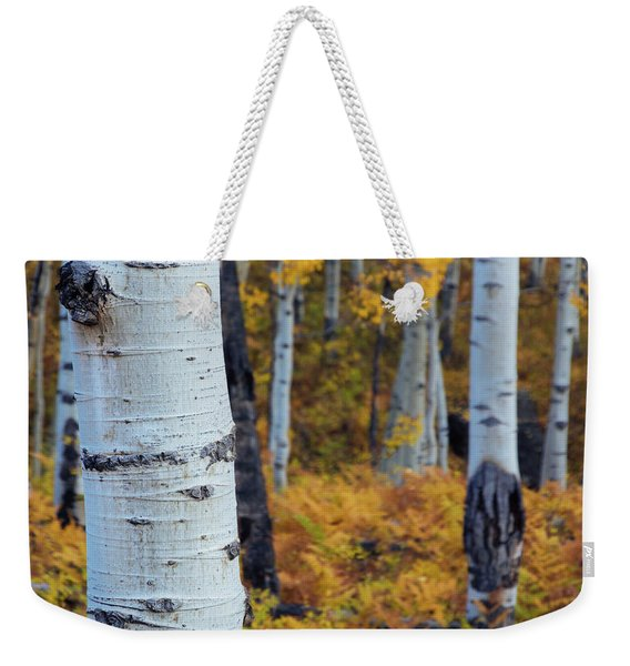 Weekender Tote Bag featuring the photograph Fall Aspen Forest by John De Bord